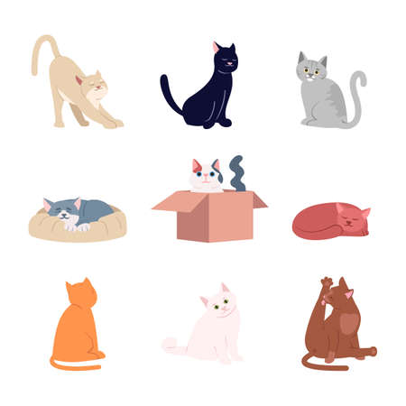 Cute cats flat vector illustrations set. Adorable domestic animals, feline friends isolated cartoon characters kit. Funny kittens playing, stretching and sleeping. Different amusing pets