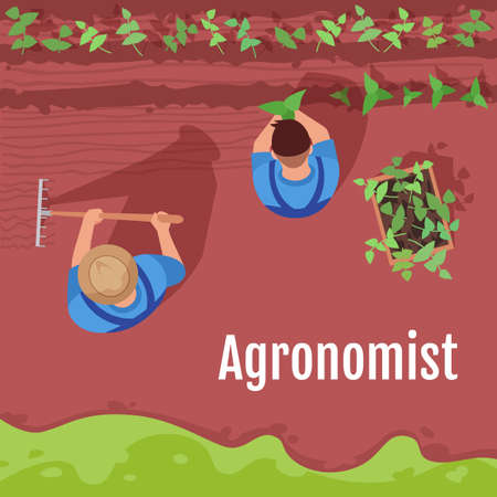 Agronomist social media post mockup. Farmer harvesting plants. Advertising web banner design template. Social media booster, content layout. Promotion poster, print ads with flat illustrations
