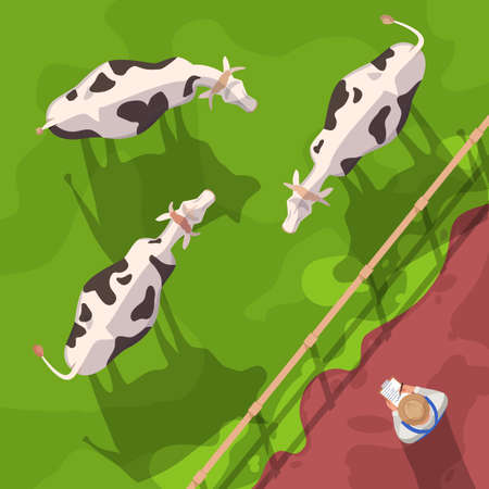 Cattle semi flat vector illustration top view. Domestic animals on ranch field. Farm worker check on cows. Agribusiness and agriculture. Farmer 2D cartoon character for commercial use 向量圖像
