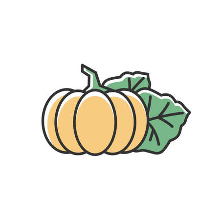 Pumpkin RGB color icon. Seasonal fresh vegetable. Nutrient gourd from farm market. Ripe whole autumnal veggie. October harvest, vegan salad ingredient. Isolated vector illustration