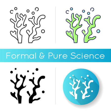 Oceanology icon. Natural science discipline, sea life researching. Linear black and RGB color styles. Aquatic environment, ocean flora and fauna study. Seaweed isolated vector illustrations