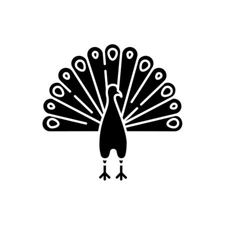 Peacock black glyph icon. Indian peafowl with spread feathers. Pheasant species. Brightly colored bird native to India. Asian wildlife. Silhouette symbol on white space. Vector isolated illustration