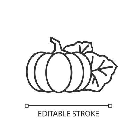Pumpkin pixel perfect linear icon. Seasonal fresh vegetable. Nutrient gourd from farm market. Thin line customizable illustration. Contour symbol. Vector isolated outline drawing. Editable stroke Illustration