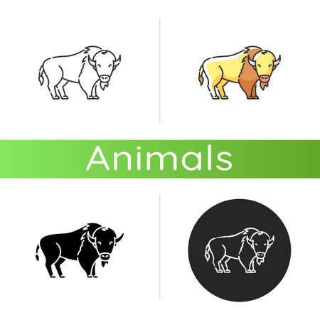 Bison icon. Linear black and RGB color styles. North American fauna, herbivore animal, endangered species. Cattle farm, domestic livestock. Large buffalo isolated isolated vector illustrations