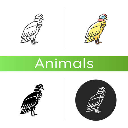 Condor icon. Linear black and RGB color styles. Large bird of with sharp beak and claws. New world vulture, predatory bird. Zoology, ornithology. Andean condor isolated isolated vector illustrations Vektoros illusztráció