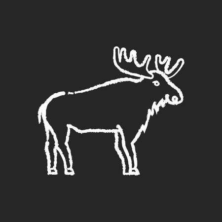 Elk chalk white icon on black background. Hoofed ruminant animal with large antlers. American forest wildlife. Herbivore wapiti with big horns. Canadian moose isolated vector chalkboard illustration