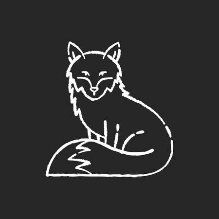 Fox chalk white icon on black background. Cute animal with furry tail, common mammal, omnivore woodland creature. Forest wildlife, zoology. Adorable fox isolated vector chalkboard illustration