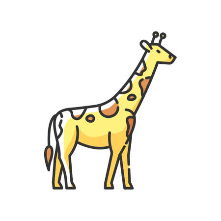 Giraffe RGB color icon. Exotic animal with long neck, african herbivore wildlife. African savanna, tropical zoo. Tall camelopard isolated vector illustration