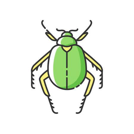Scarab beetle RGB color icon. Small arthropod, egyptian bug, desert inhabitant. Zoology, entomology, ancient Egypt culture. Dung beetle isolated vector illustration