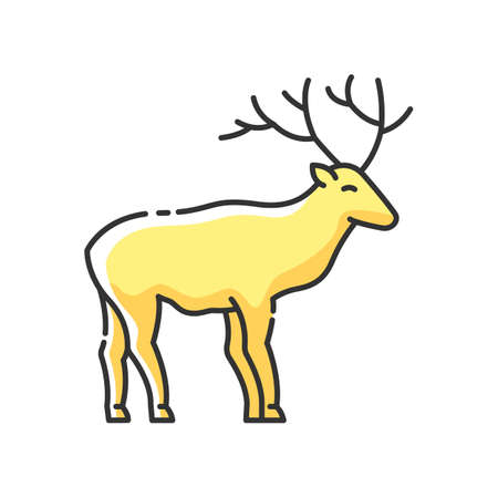 Deer RGB color icon. Hoofed ruminant mammal, herbivore animal with beautiful antlers. Forest wildlife. Majestic reindeer, horned stag isolated vector illustration