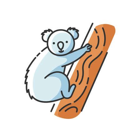 Koala RGB color icon. Cute herbivore animal, australian native fauna, exotic wildlife. Adorable koala bear sitting on eucalyptus tree isolated vector illustration