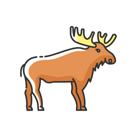 Elk RGB color icon. Hoofed ruminant animal with large antlers. American forest wildlife. Herbivore wapiti with big horns. Canadian moose isolated vector illustration