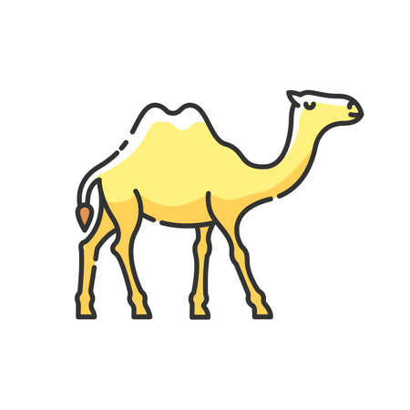 Camel RGB color icon. Arabian domesticated animal, tropical climate fauna. Exotic wildlife, wilderness inhabitant. Two humped camel isolated vector illustration 向量圖像