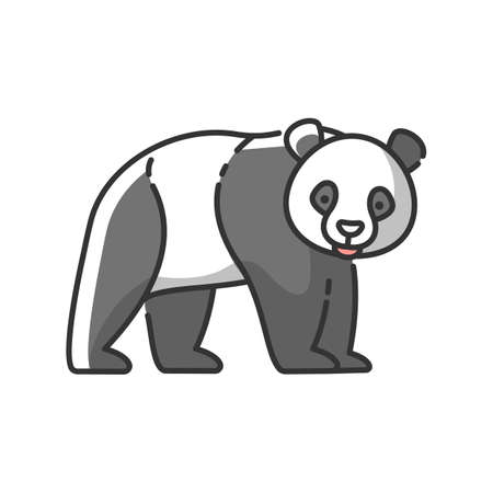 Panda bear RGB color icon. Native chinese fauna, common asian wildlife. Zoo mascot, oriental forest inhabitant. Black and white bear isolated vector illustration 向量圖像