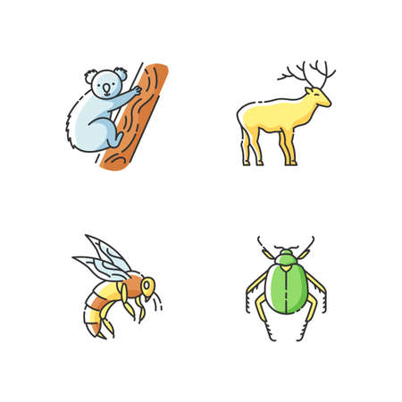 Mammals and insects RGB color icons set. Tropical koala, forest deer, scarab beetle and honeybee. Exotic and ordinary animals. Isolated vector illustrations 向量圖像