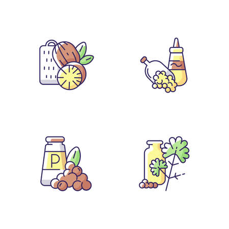 Spicy condiments RGB color icons set. Food seasoning. Natural supplement. Cooking condiment. Mustard and black pepper. Cilantro. Traditional indian spices. Isolated vector illustrations