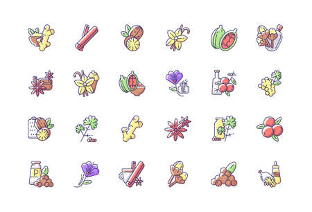 Asian spices RGB color icons set. Culinary herbs. Cooking ingredients. Natural supplements. Cloves and star anise. Cardamom. Traditional indian spices. Isolated vector illustrations