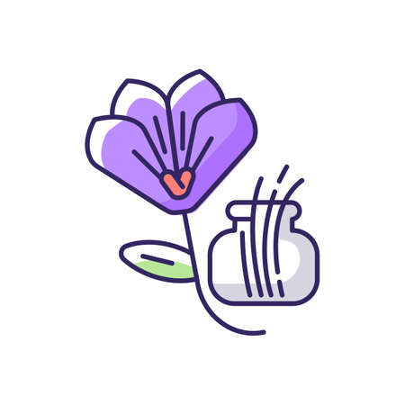 Saffron RGB color icon. Saffron crocus. Expensive spice. Supplement. Food seasoning and coloring. Herbs. Cooking condiment. Traditional indian spices. Isolated vector illustrations Ilustracje wektorowe