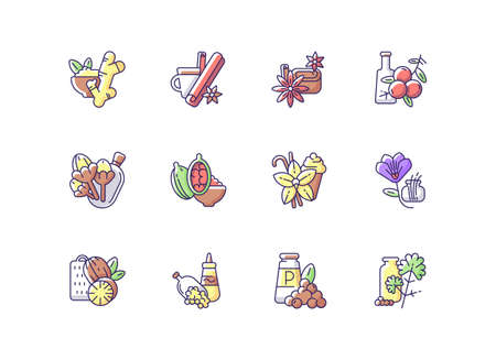 Classic spices RGB color icons set. Food seasoning. Indian spices. Cinnamon and vanilla. Mustard seeds and black pepper. Nutmeg. Traditional asian spices and herbs. Isolated vector illustrations Ilustração