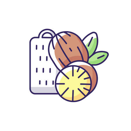Nutmeg RGB color icon. Nut meg spice. Evergreen tree seeds. Desserts flavoring. Cooking and baking condiment. Organic food. Traditional indian spices. Isolated vector illustrations Ilustração