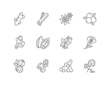 Indian spices linear icons set. Aromatic flavoring. Cinnamon and star anise. Coriander and black pepper. Asian seasonings. Customizable thin line contour symbols. Isolated vector outline illustrations