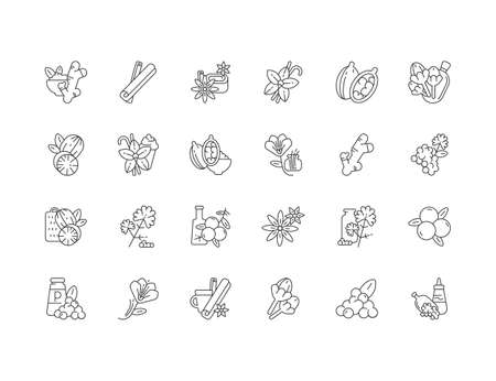 Asian spices linear icons set. Culinary herbs. Cooking ingredients. Natural supplements. Cloves and star anise. Cardamom. Customizable thin line contour symbols. Isolated vector outline illustrations Ilustração