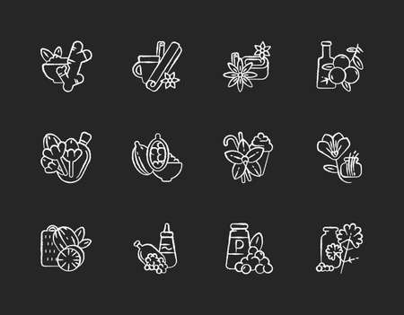 Classic spices chalk white icons set on black background. Food seasoning. Indian spices. Cinnamon and vanilla. Mustard seeds and black pepper. Isolated vector chalkboard illustrations