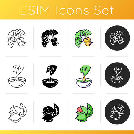 Natural additives icons set. Ginkgo biloba. Herbal extract. Guarana plant for energy drink supplement. Organic product. Linear, black and RGB color styles. Isolated vector illustrations