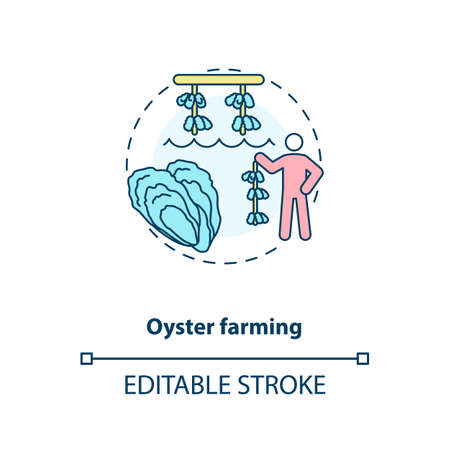 Oyster farming concept icon. Luxury seafoods growing. Healthy organic foods. Shellfishes production. Aquaculture idea thin line illustration. Vector isolated outline RGB color drawing. Editable stroke
