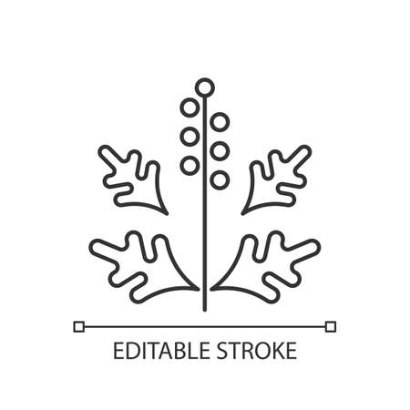 Ragweed pollen linear icon. Blooming ambrosia. Cause of allergic reaction. Allergy for plant. Thin line customizable illustration. Contour symbol. Vector isolated outline drawing. Editable stroke