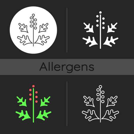 Ragweed pollen dark theme icon. Blooming ambrosia. Cause of allergic reaction. Seasonal allergen. Allergy for plant. Linear white, simple glyph and RGB color styles. Isolated vector illustrations