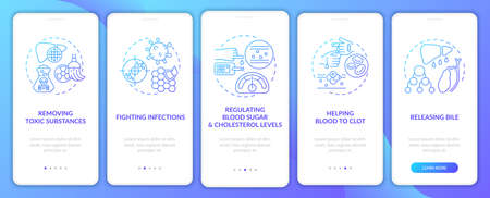 Liver responsibilities onboarding mobile app page screen with concepts. Releasing bile, detox walkthrough 5 steps graphic instructions. UI, UX, GUI vector template with linear color illustrations