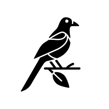 Oriental magpie black glyph icon. Azure robin. Flying bird. Taiwan wildlife. Wild animal. Protected species. Korean culture. Silhouette symbol on white space. Vector isolated illustration