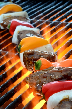 Kabob on BBQ grill with hot flames photo