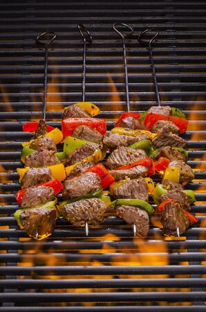 shish: Kabobs on a Hot Flaming Barbecue Grill