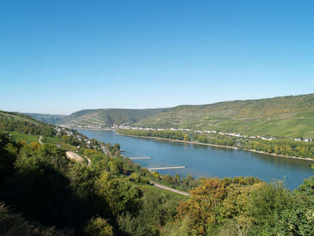viniculture: The Rhine Valley with his typical hills and viniculture