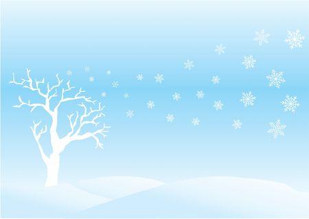 Winter day photo