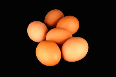 Half a Dozen Eggs Stock Photo