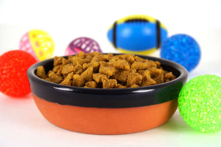 Bowl of Pet Food Stock Photo - 5776893