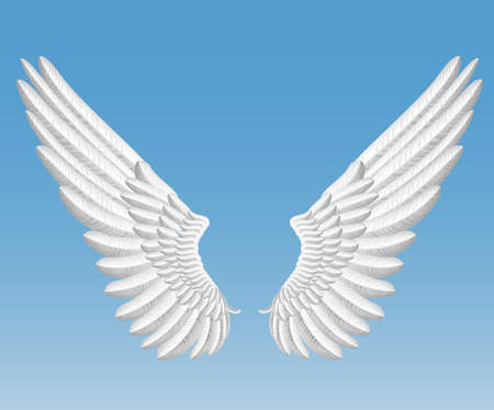 artificial wing: angel wings Illustration