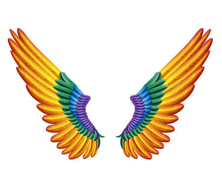color wings Vector