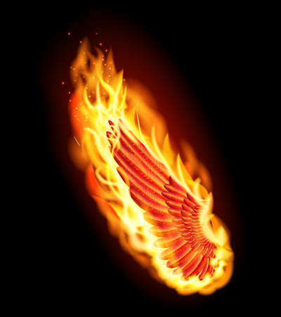 flame wings: Left red wing on fire