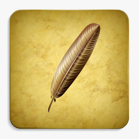 feather parchment icon
