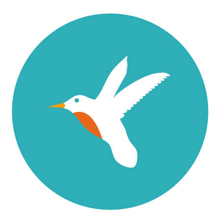 colibri icon Illustration