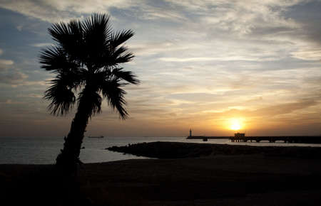 Sunset in Almeria (south-east coast of Spain) with the silhouette of a palmtree in the foreground and of a lighthouse in the background.