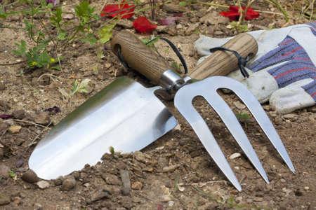 Garden tools: trowel, rake and gloves.