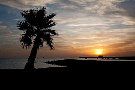Sunset in Almeria (south-east coast of Spain) with the silhouette of a palmtree in the foreground and of a lighthouse in the background. Stock Photo - 7974598