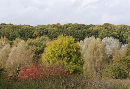 Autumn landscape in England Stock Photo