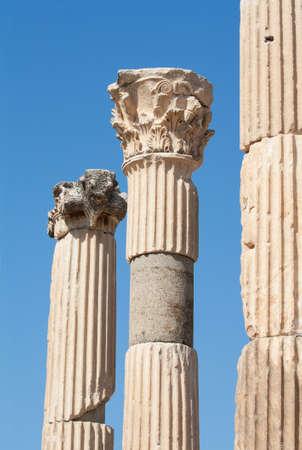 efeso: Antichi classiche colonne corinzie a Efeso sito archeologico, in Turchia