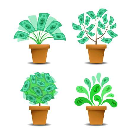 clay pot: money tree and money bush in clay pot,vector illustration
